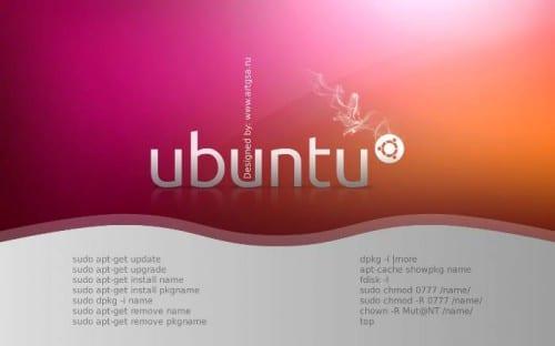 Ubuntu 10.04 Wallpaper