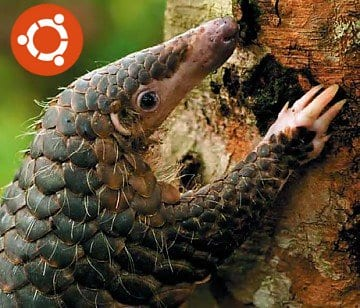 Ubuntu 12.04 Precise Pangolin Alpha 1 disponible