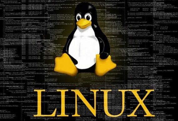 Pinguino Linux