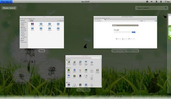 Previsualización de ventanas en Pear Linux 5