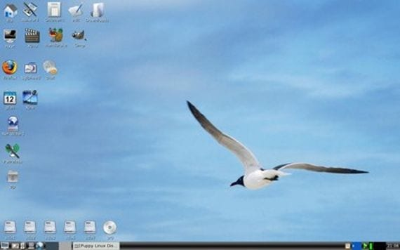 Puppy Linux 5.4 Precise Puppy LTS