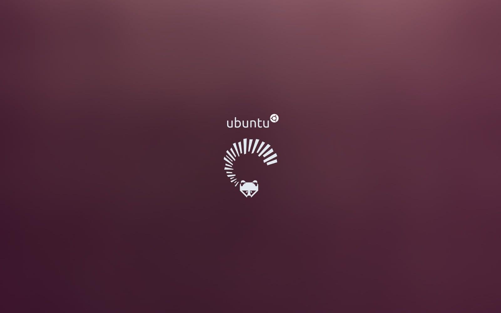 Ubuntu 13.04 wallpaper