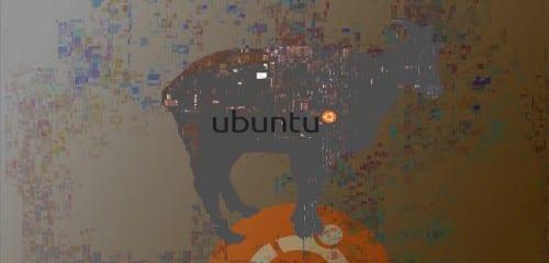 Animal_Ubuntu_1404