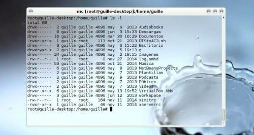 permisos archivos linux