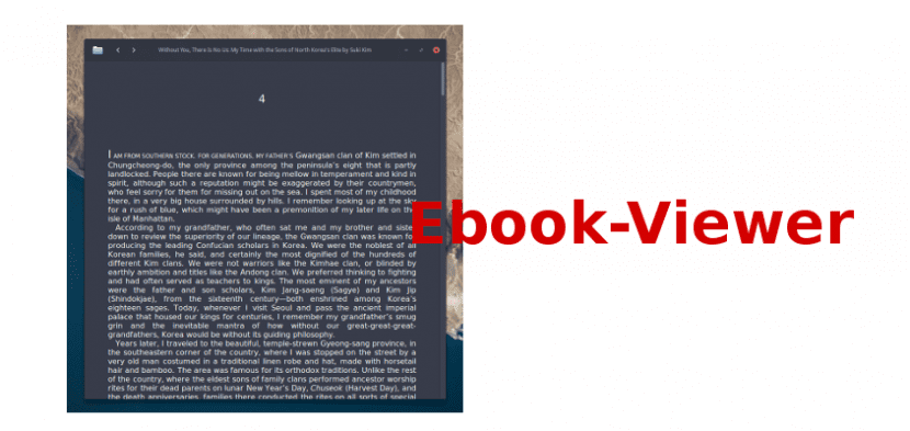 Ebook-Viewer