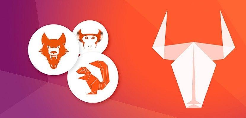 ubuntu mascotas