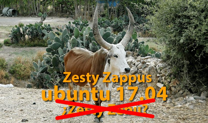 Zasty Zeppus