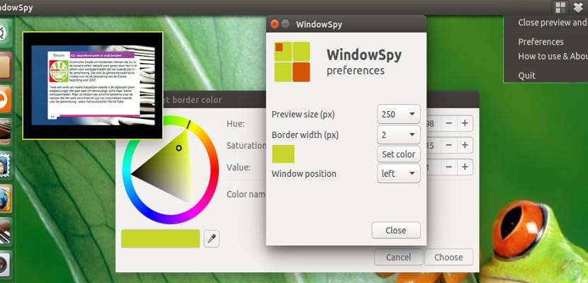 WindowSpy