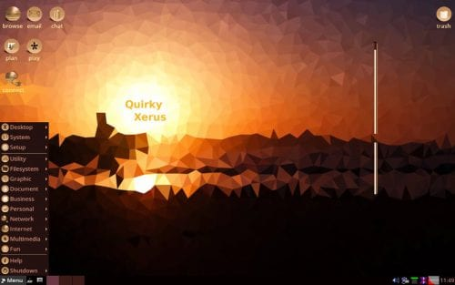 Quirky Xerus
