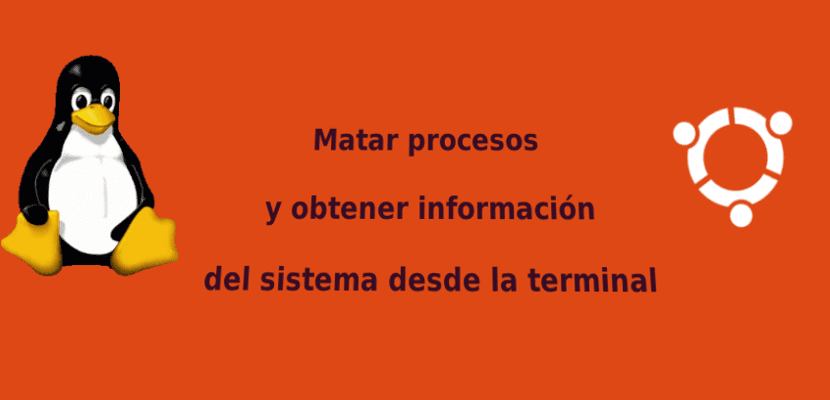 Matar procesos desde la terminal