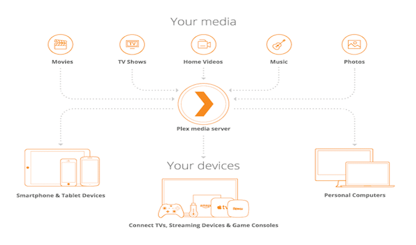 servicios distribución Plex