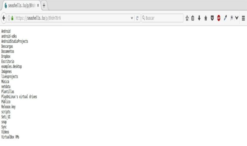 SeaShells salida ls navegador modo texto