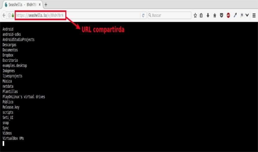 SeaShells salida ls navegador
