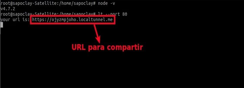 dirección localtunnel