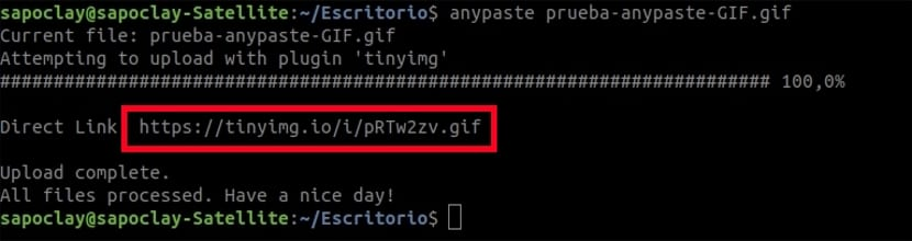 anypaste archivo gif