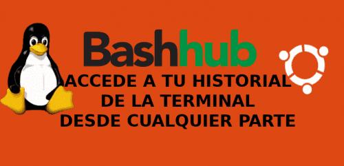 bashhub about