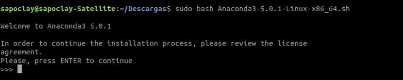 lanzando anaconda