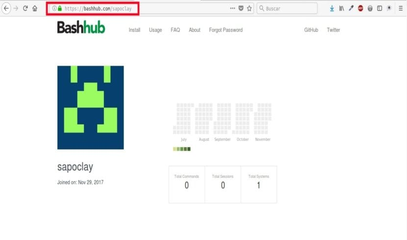 web usuario bashhub