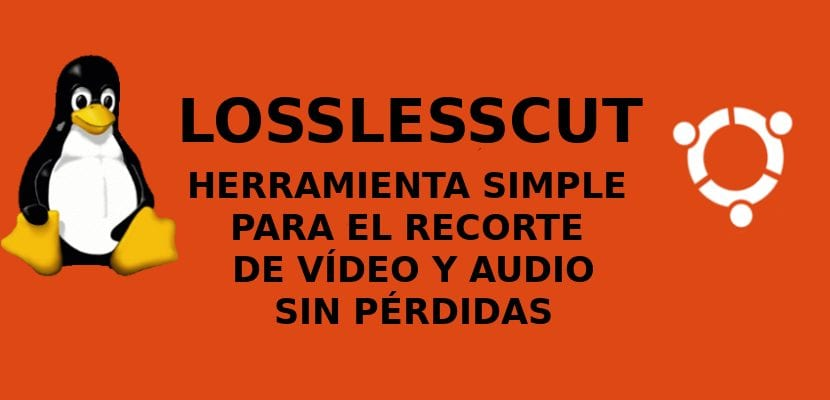 about LossLessCut