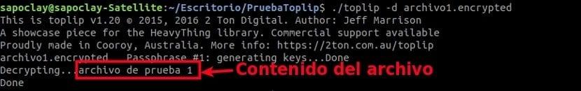 toplip desencriptado archivo solo