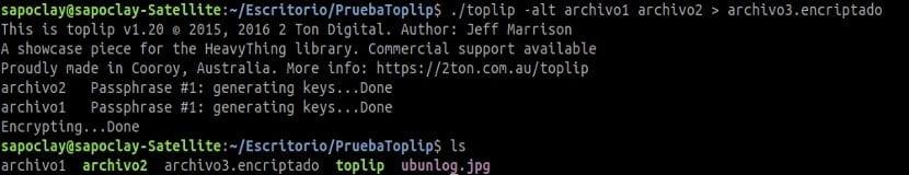 toplip encriptado dos archivos