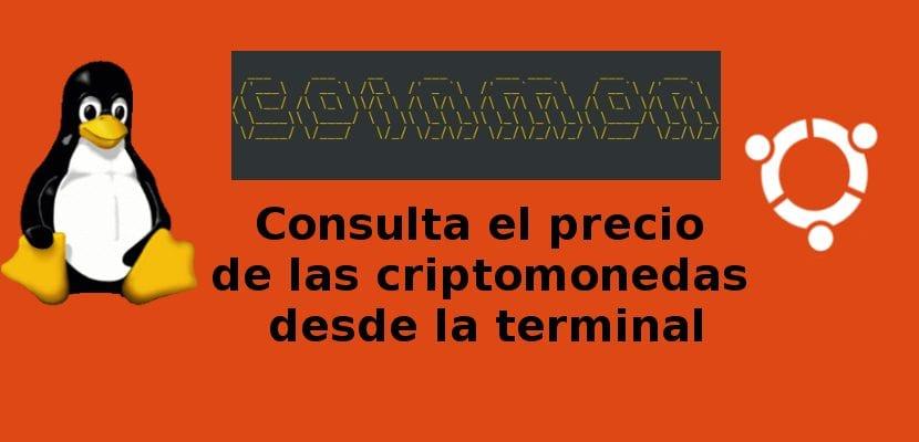 logo coinmon
