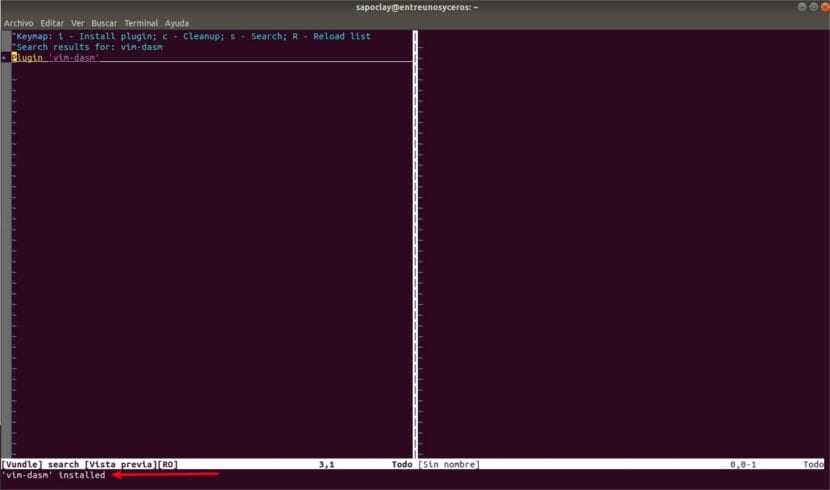 Vim vundle dasm installed