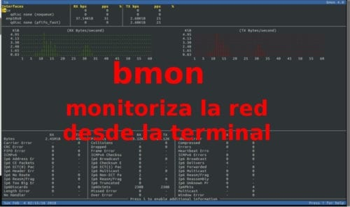 about bmon