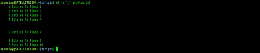 nl -s punto líneas