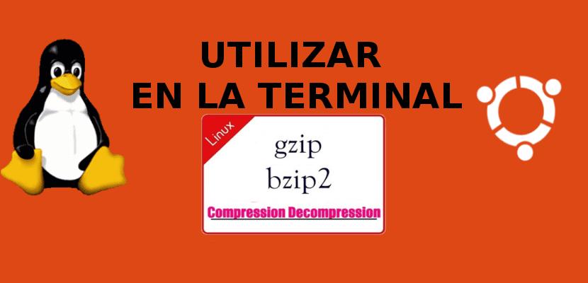 about gzip y bzip2