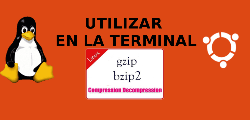 Comprimir y descomprimir archivos utilizando gzip y bzip2
