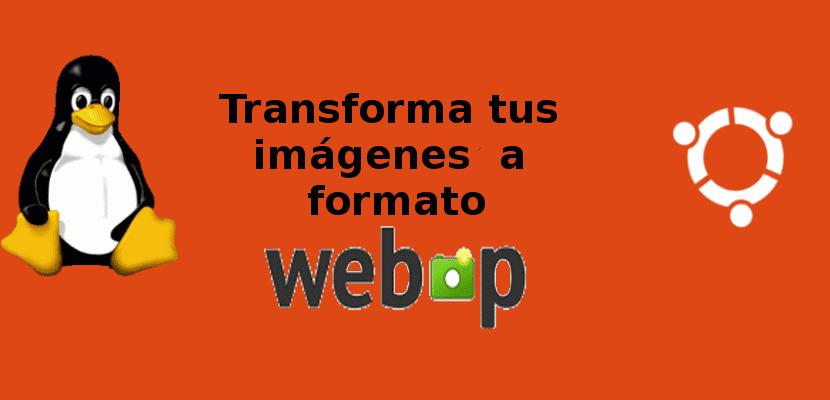 About Webp