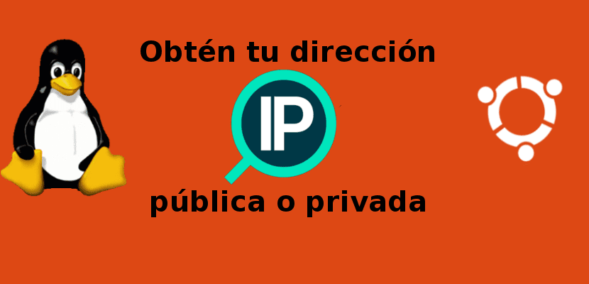 obtén tu dirección IP pública o privada