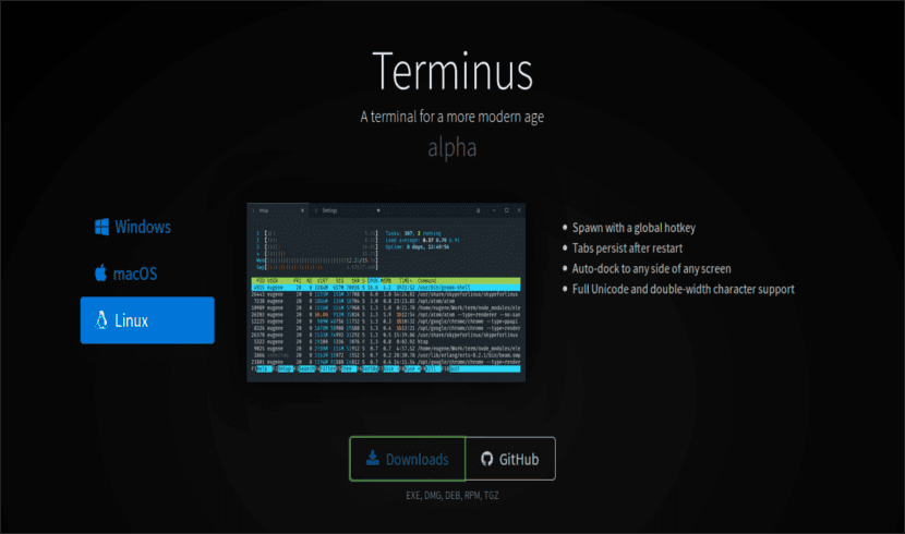 Web terminus