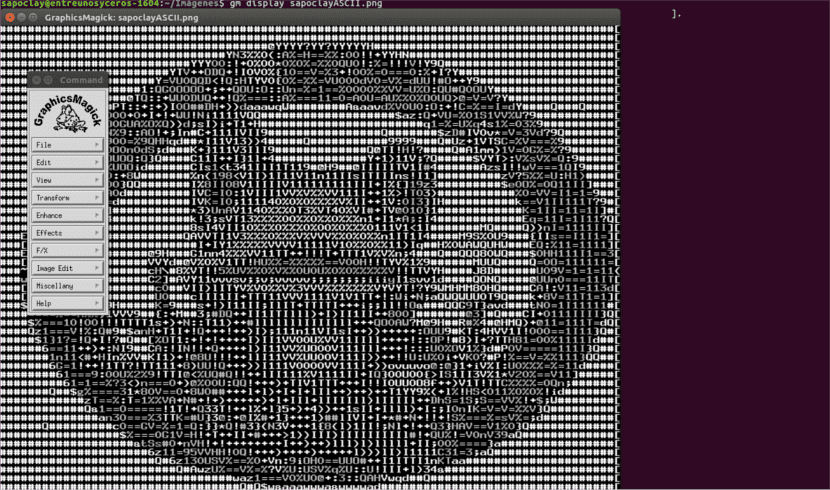 gm-display-imagen