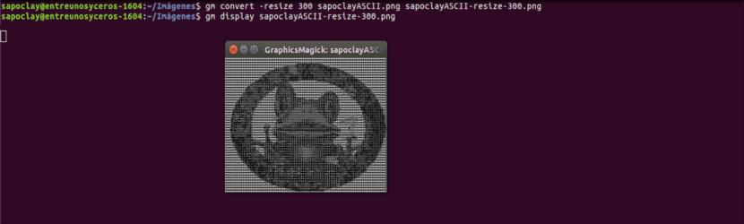 redimensión imagen 300 gm Graphicsmagick