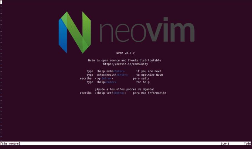 About Neovim