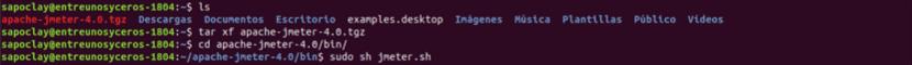 descompresión y ejecución de JMeter