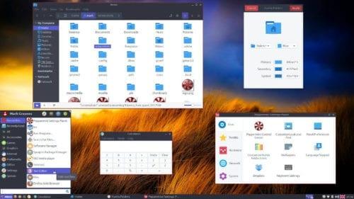 Captura de pantalla de Peppermint 9