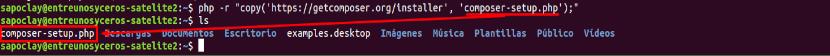 Descargar instalador para Composer