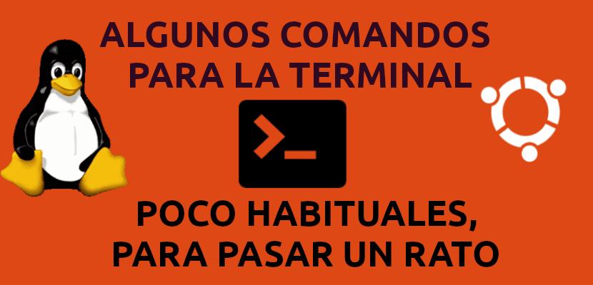 comandos poco habituales para la terminal