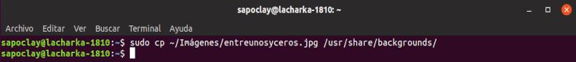 copiar fondo de pantalla logueo Ubuntu 18.10
