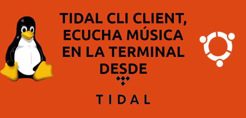 about tidal cli client