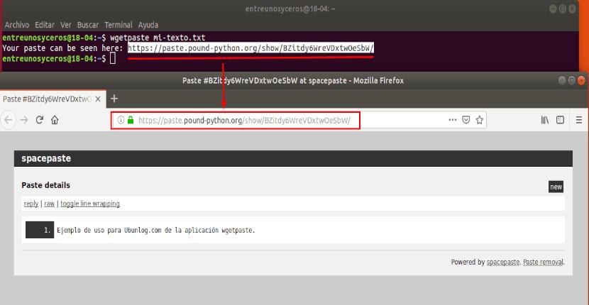 archivo de texto subido con wgetpaste y visto esde el navegador web