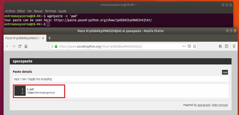 wgetpaste muestra el comando y el resultado