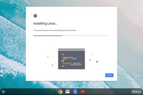 Instalando Linux Apps
