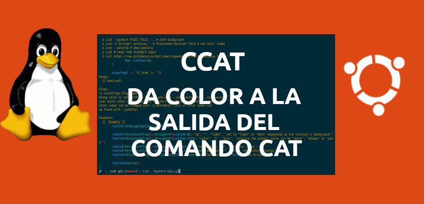 about ccat