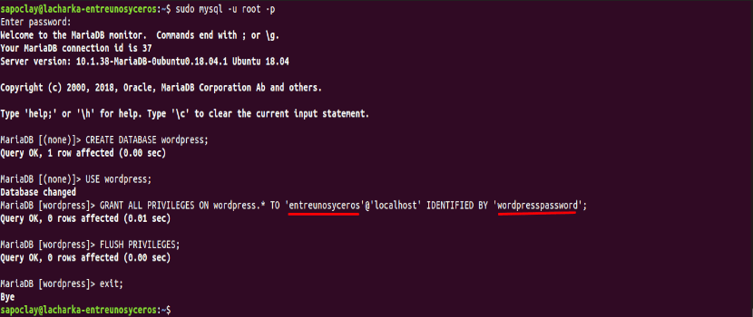 Crear la base de datos para Wordpress 5.1