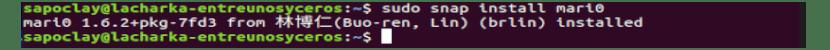Instalación del paquete snap de mari0 en Ubuntu
