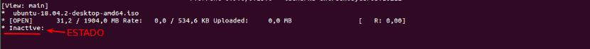 Torrent pausado con rTorrent